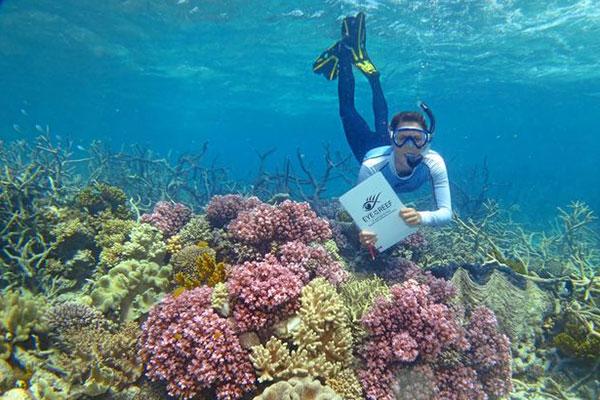 """监测""""大堡礁""""上珊瑚的长期健康"""