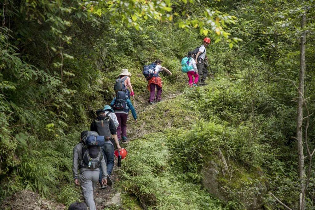四川关坝大熊猫栖息地森林巡护行动